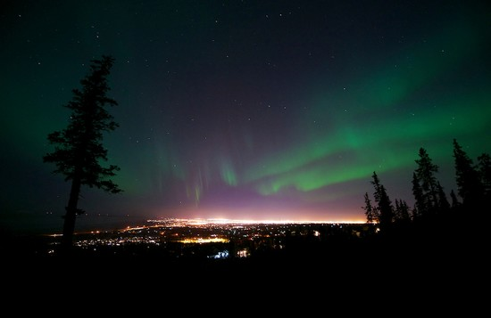 Northern Lights - Alaska (Fairbanks and Anchorage)