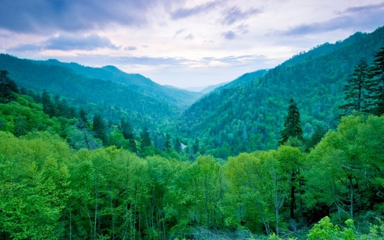 Smoky Mountains - North Carolina and Tennessee