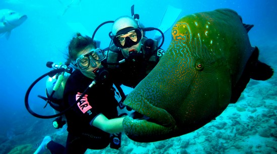 Scuba Diving Bodrum